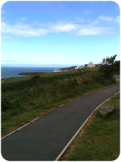 A Path in Ceredigion